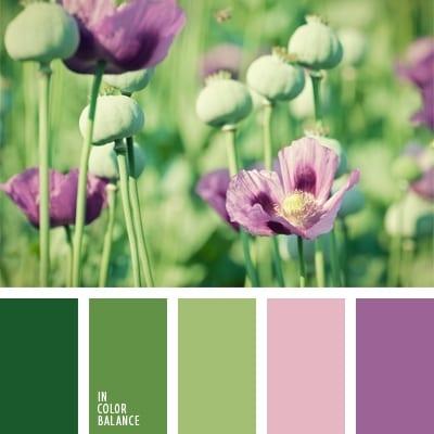 Зеленый и розовый