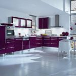 Kitchen-Cabinets-Modern-Purple-White-Walls-Oven-Frosted-Glass-Doors