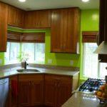 green-kitchen-inside-green-kitchen-app-pleasant-green-kitchen-interior-cute-green