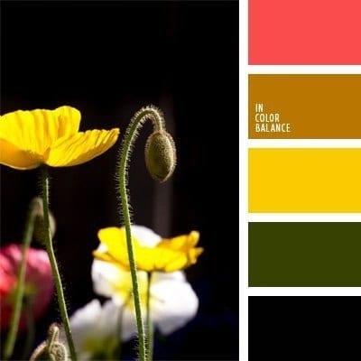 Сочетания цветов для кухни в стиле Китая