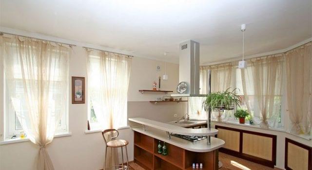 Дизайн кухни, совмещенной со столовой или гостиной: идеи для частного дома